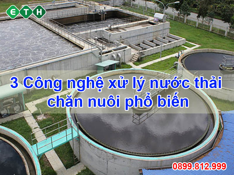 3 cong nghe xu ly nuoc thai chan nuoi pho bien